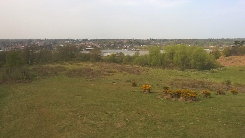 Woodbridge from Sutton Hoo