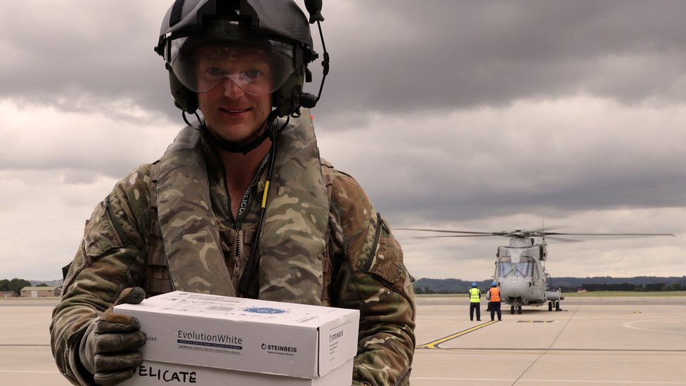 Royal Navy rescues baby pigeon aircraft carrier stowaways