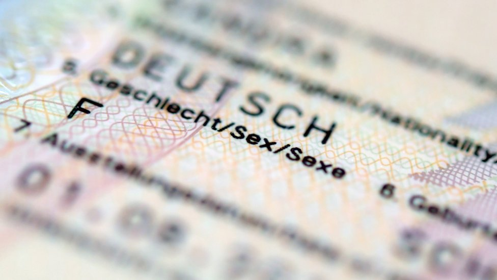 Close up of the sex category on a German passport