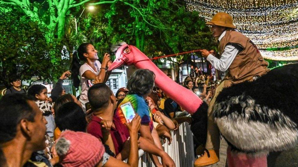 festival u medeljinu