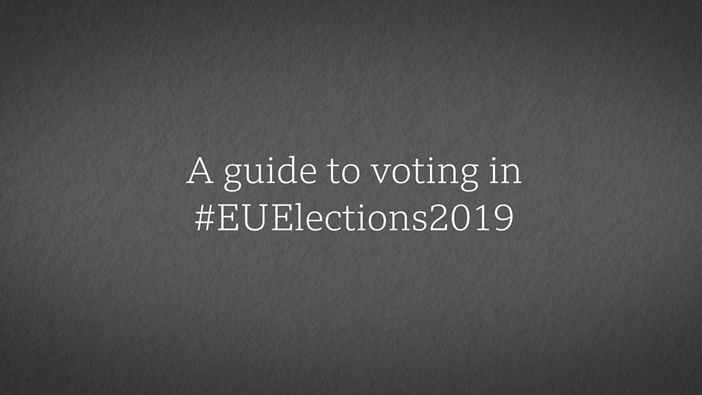 A guide to voting in the European elections