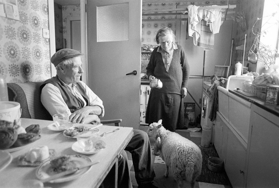 John and Jeannie with pet lamb, Nesting
