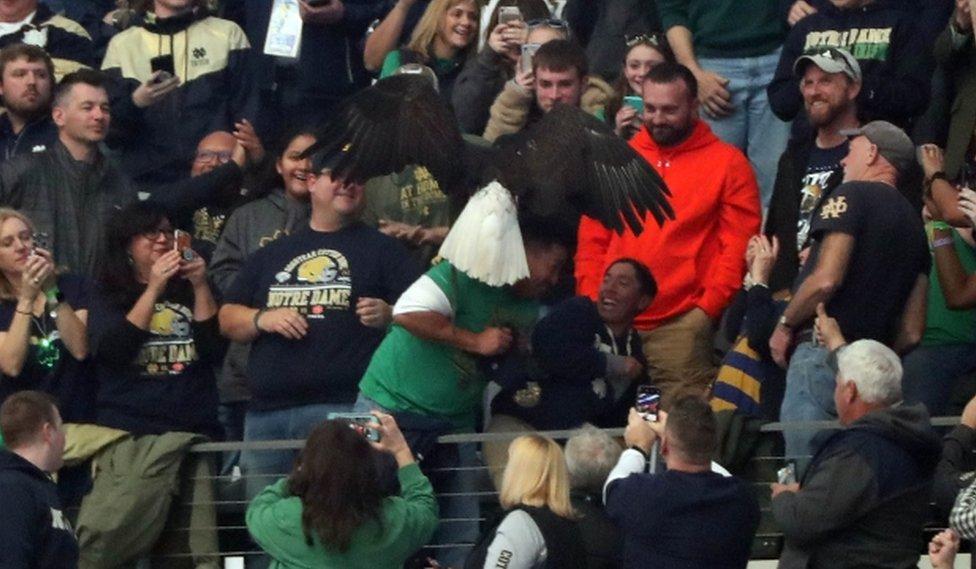 Albert Armas pasó miedo mientras el águila permaneció posado sobre su hombro, pese a las risas de su hijo Jaysen.