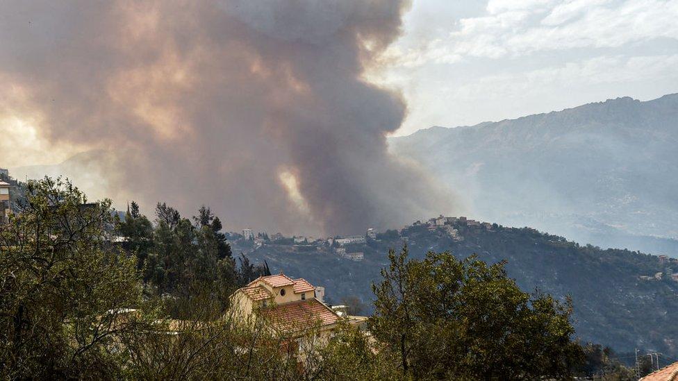 Kabylie bölgesindeki orman yangınından yükselen duman.