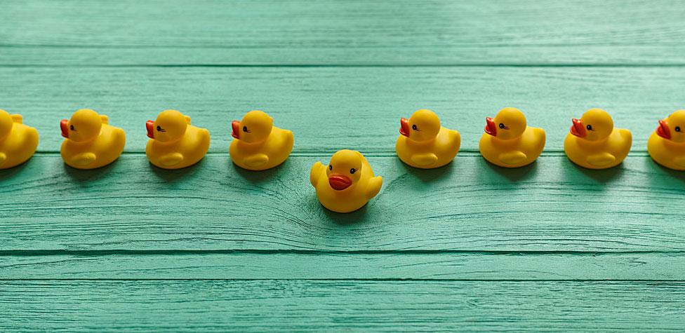 Patos en línea con uno yendo para otro lado