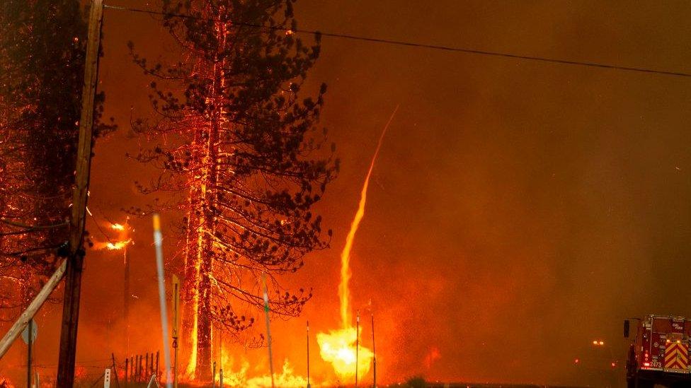 Un remolino de fuego en Susanville, California, 20 de julio de 2020