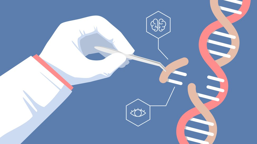 CRISPR CAS9.