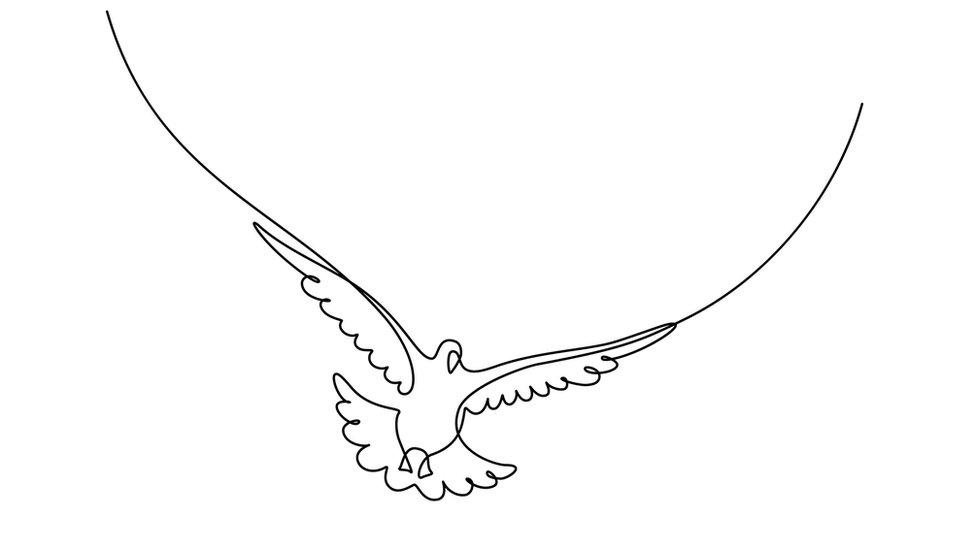 Dibujo de paloma
