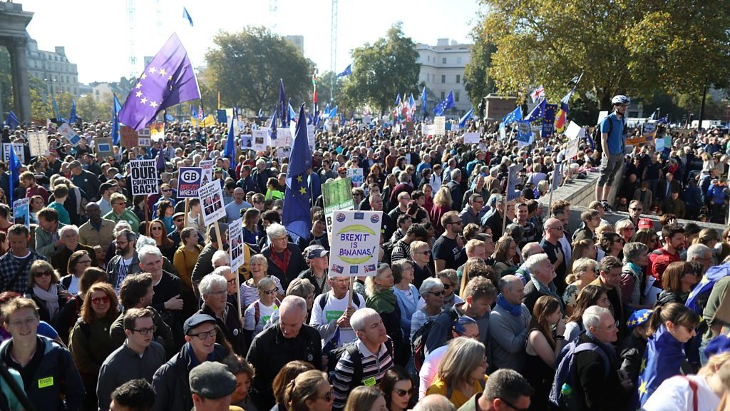 Brexit protesters take to streets of London
