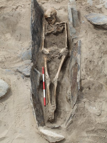 One of the skeletons at Whitseands Bay