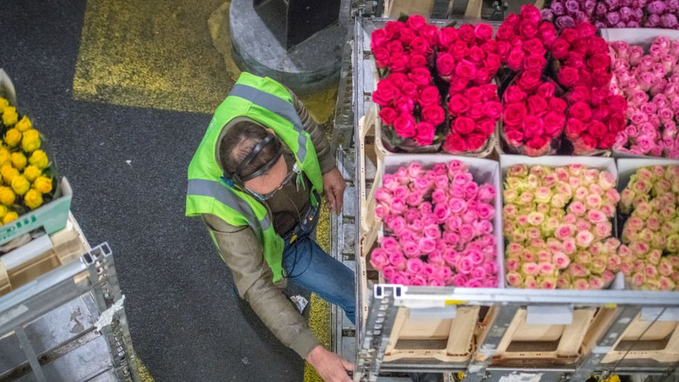 Man working ion a flower warehouse