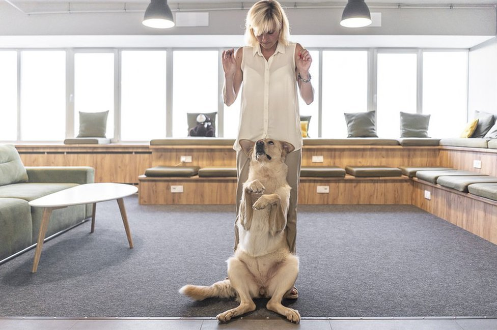 Dog trainer Marina Prokopenko and her dog Nika