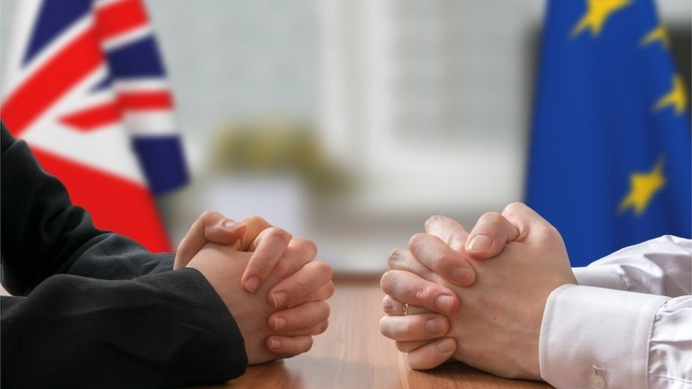 Negotiation of Great Britain and European Union