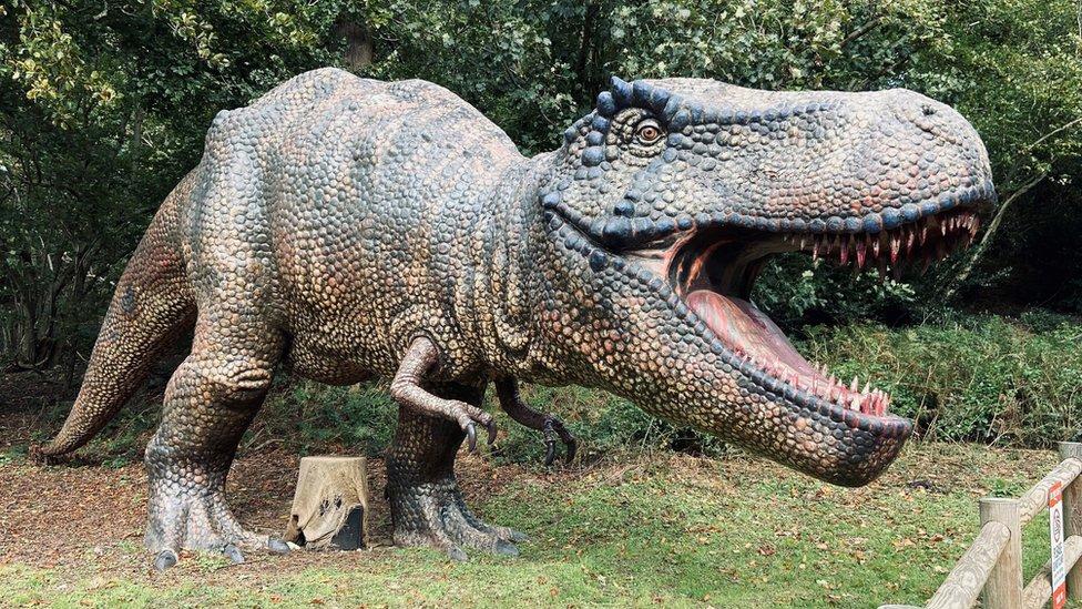 Dinosaur park in Norfolk.