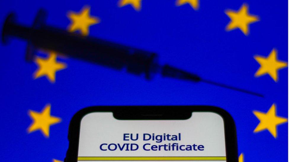 эlektronnый kovid-sertfikat na fone flaga ES