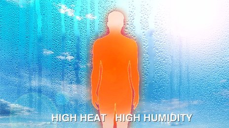 How does the body cope with heat?