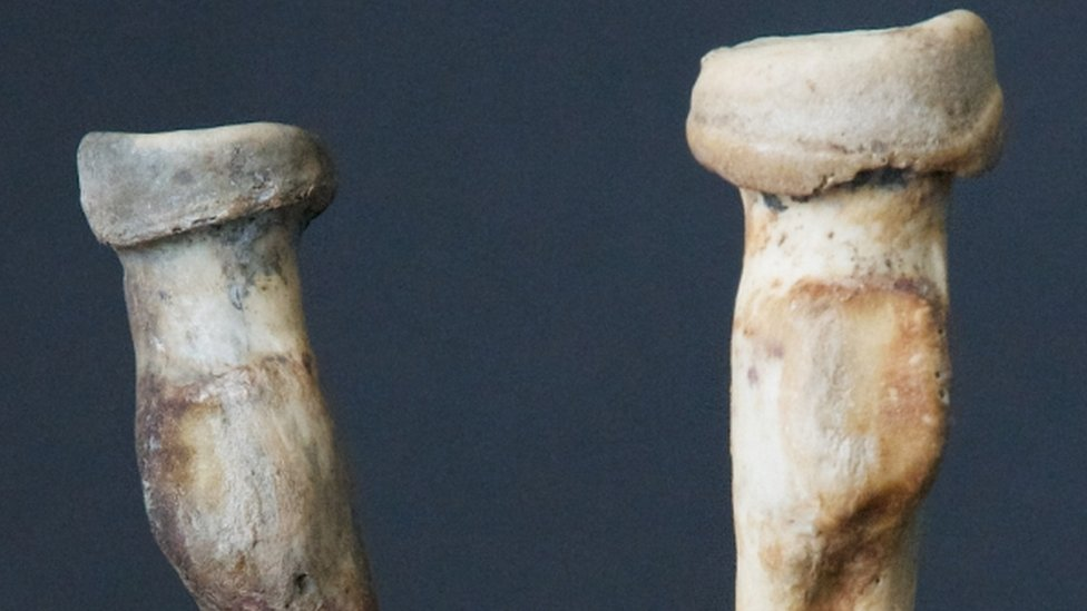 This right arm bone is bigger than the left indicates they belonged to an archer