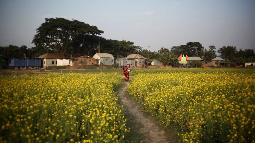 Área rural de Bangladesh
