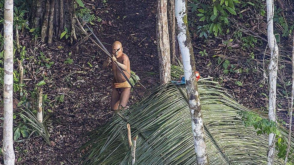 Indígena brasileño