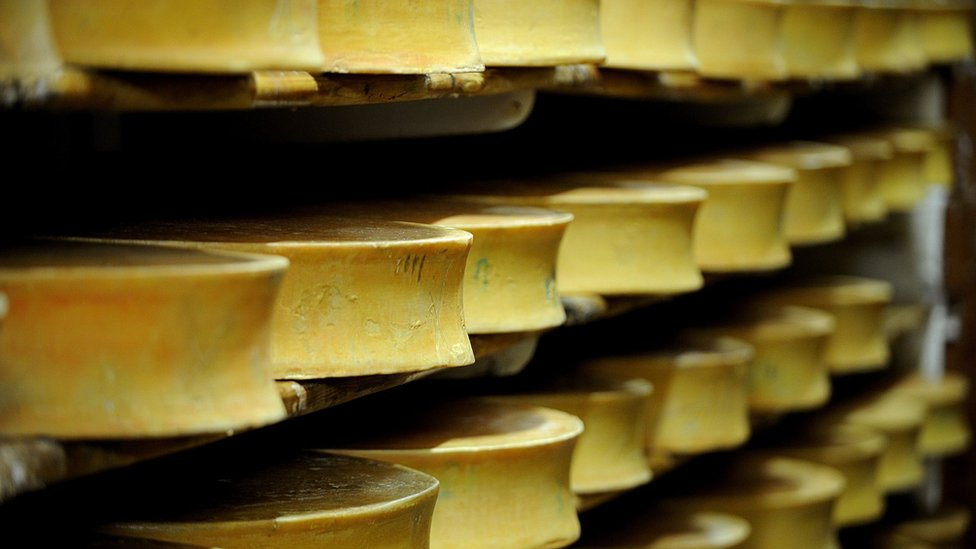 Rounds of cheese
