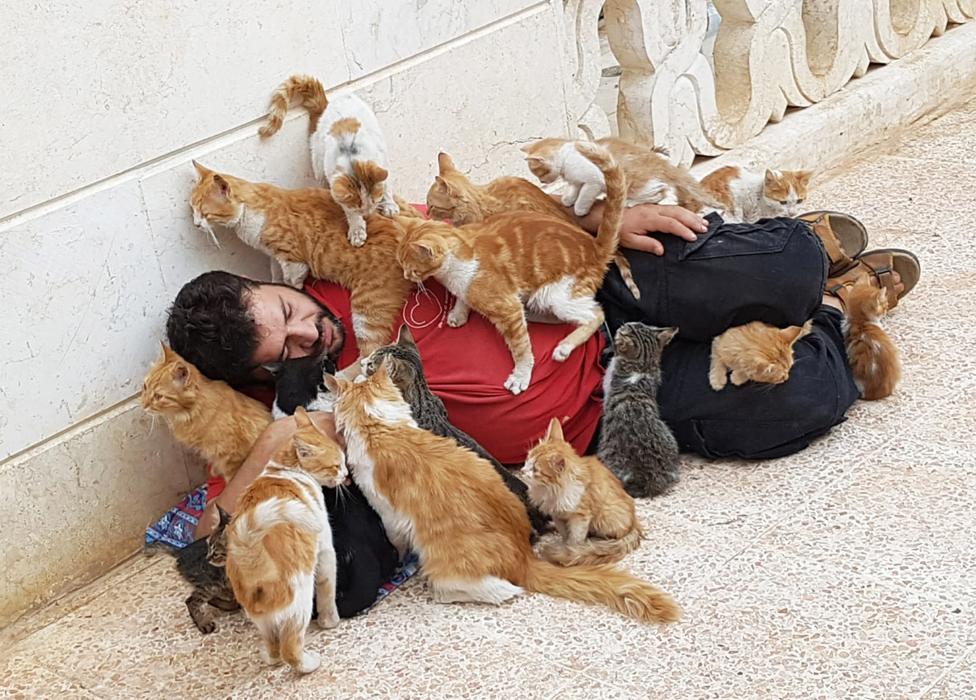 Alaa mengajar anak-anak untuk mencintai kucing.
