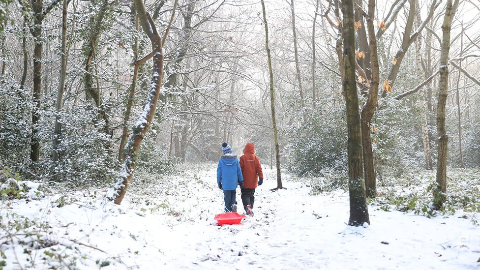"""انطلق طفلان بزلاجتهما عبر الغابة في """"نوتسفورد هيث"""" بعد انخفاض درجات الحرارة خلال الليل إلى ما دون الصفر"""