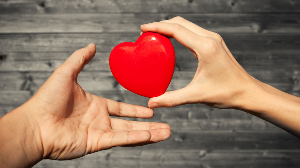 Manos de una mujer y un hombre con un corazón de plástico