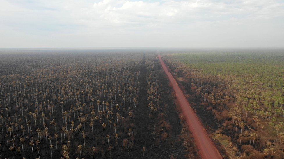 Aerial view of damage caused by wildfires in Otuquis National Park, in the Pantanal ecoregion of south-eastern Bolivia, on August 27, 2019