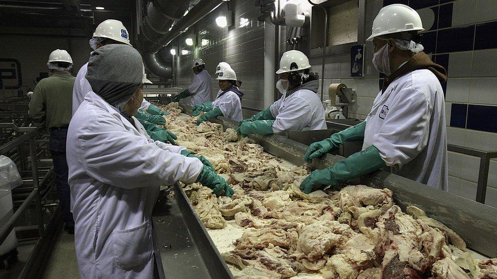 Planta de procesamiento de carne