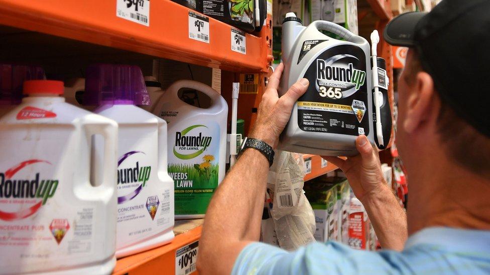 Botes del herbicida Roundup en estanterías de un supermercado