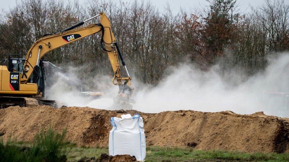 Mass burial of mink near Holstebro, 9 Nov 20