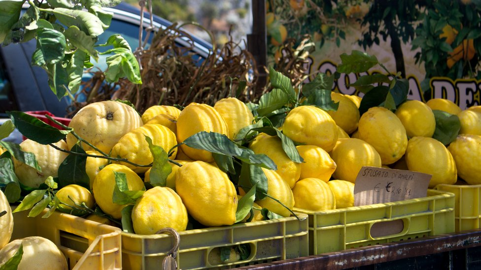 The unusually large Amalfi lemons for sale by the side of a road in the Amalfi region of Italy.