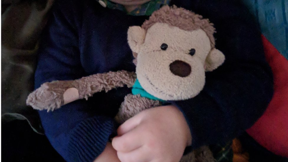 Mac the monkey is distinguishable by his tunic made from a sock, and two plasters