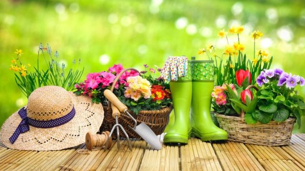 Vasos de plantas e chapéu para jardinagem