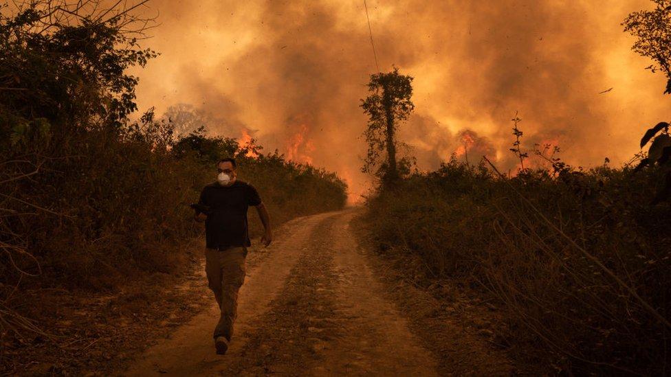 Incendios en el Pantanal