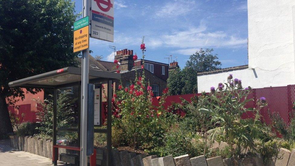 Jardín cerca de una parada de autobús