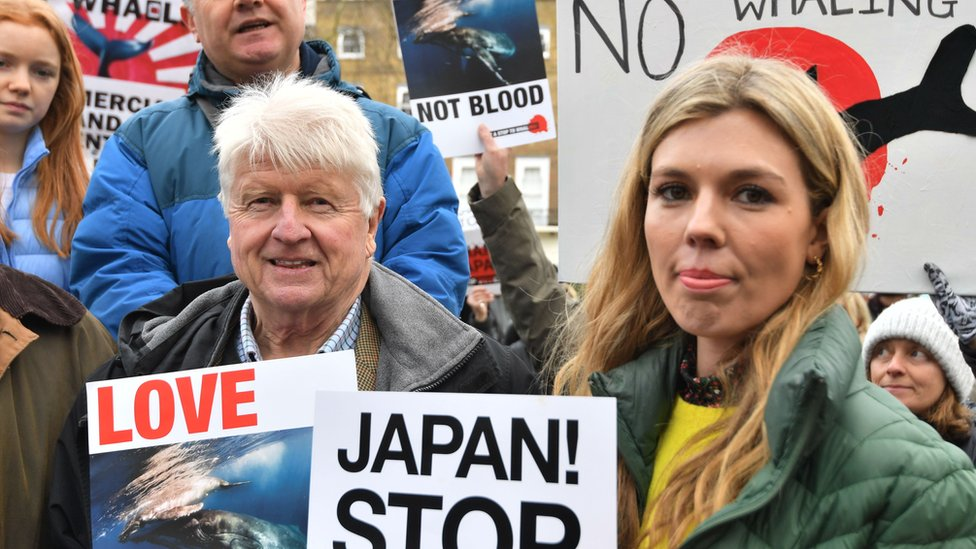 Stanley Johnson y Carrie Symonds