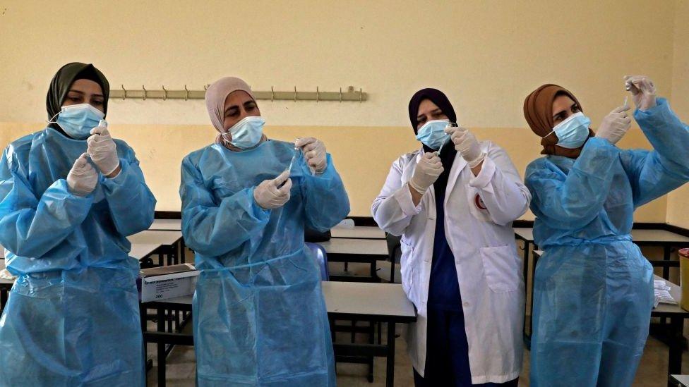 Filistin Aşı