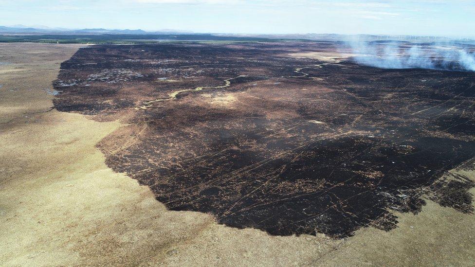 Fire_Damage_Uair_2019_Aerial Credit Paul Turner.jpg