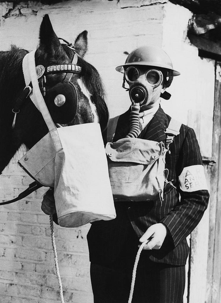 Cavalo com máscara