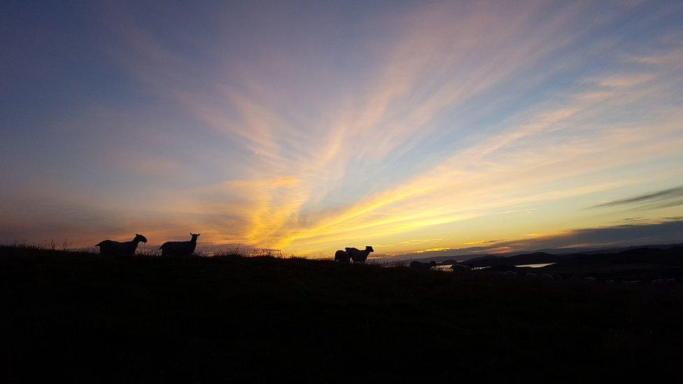 Tarbert Hill looking over West Kilbride
