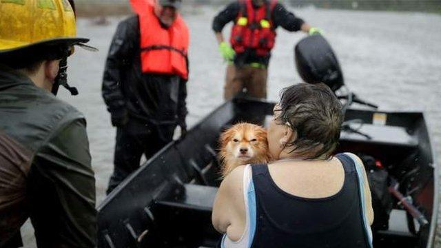 Algunos de los afectados fueron rescatados junto a sus mascotas por los equipos de emergencia.