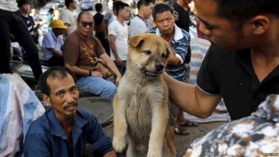 Man holding up a dog