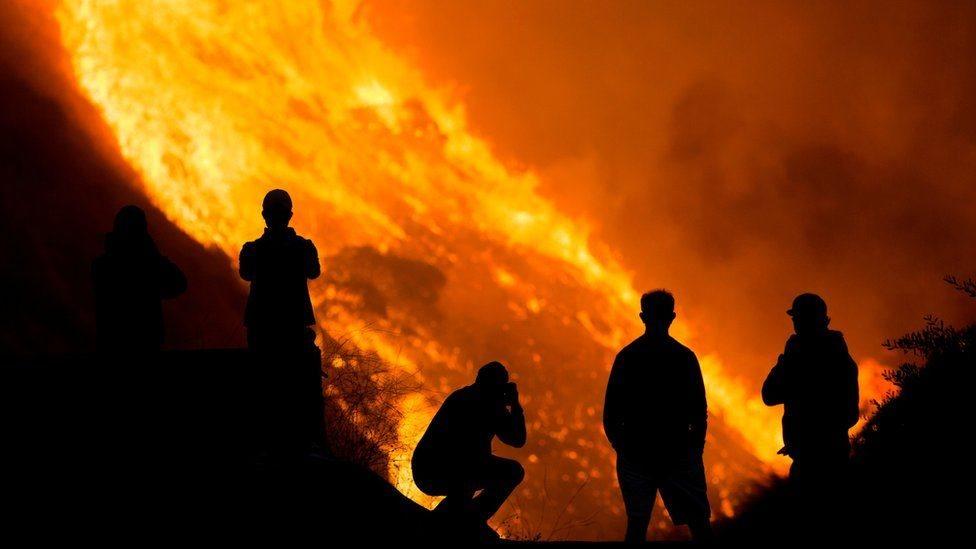 حرائق الغابات في ولايات أمريكية جنوبية