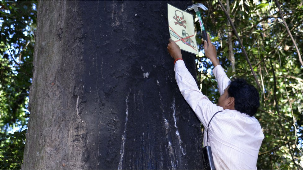 Leng Ouch hanging a sing on a tree (Image: Goldman Environmental Prize)