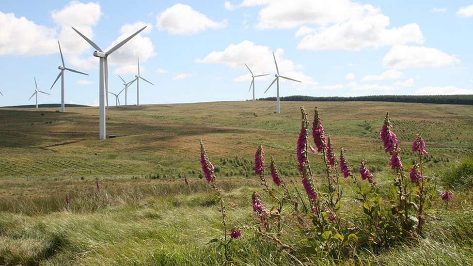 Plans to expand Crystal Rig wind farm lodged