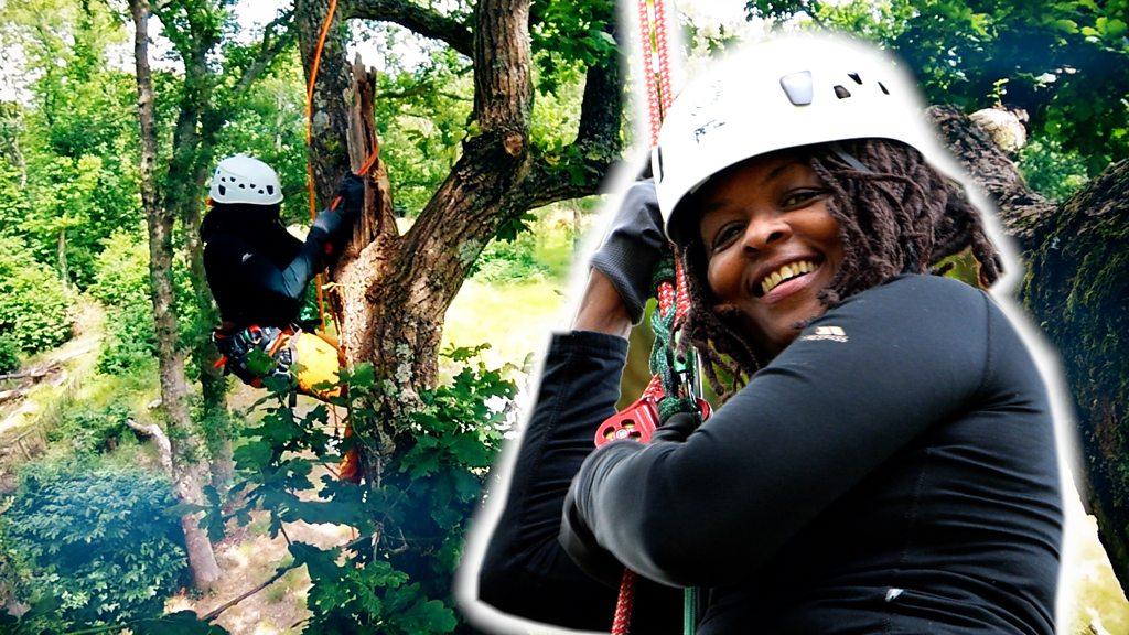 BBC News - Coronavirus: Social tree climbing 'boosts mental health'