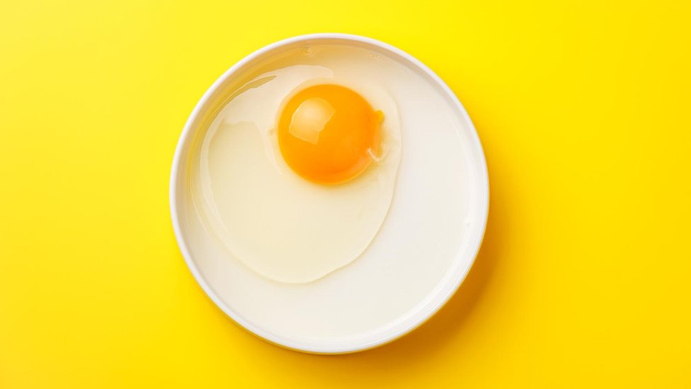 Živo jaje na tanjiru