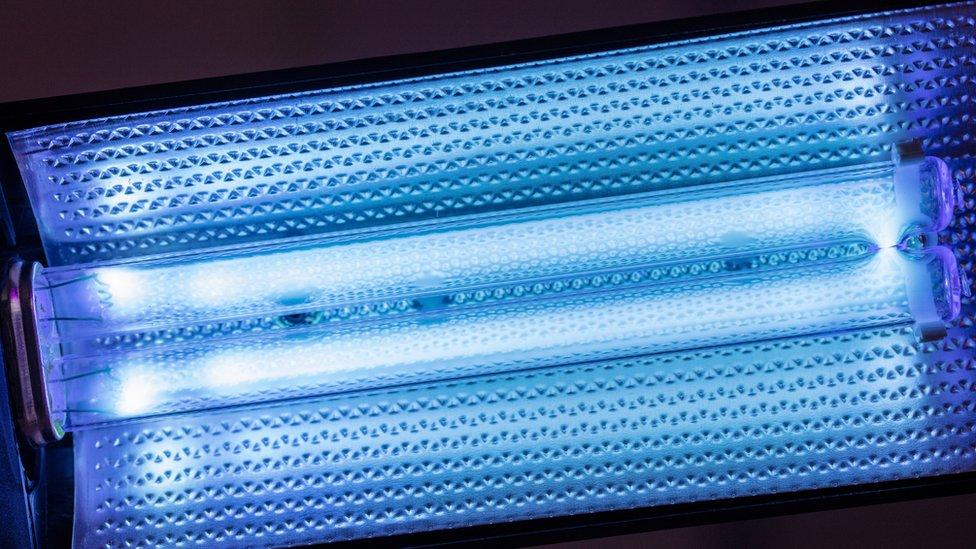 A UV-C light