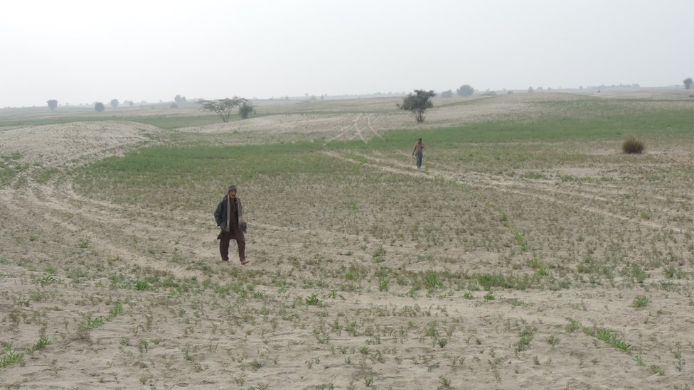 SUV marks are left on the landscape of a field